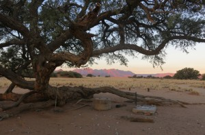 beautiful Sossusvlei campsite