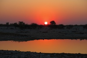 Sunset at the waterhole.