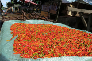 Some chili peppers out to dry near a local market.