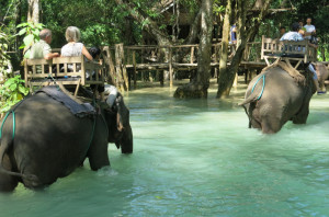 Elephant rides at Tat Se.