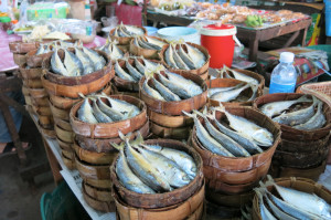 Dried mackerel at the market. Smells about exactly what you'd think it would smell like.