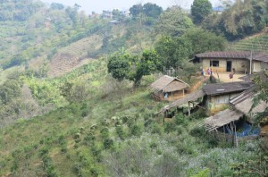 Hill tribe homes on the mountainside.