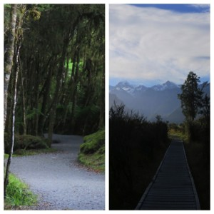 A couple shots from the path in and out of the lake.