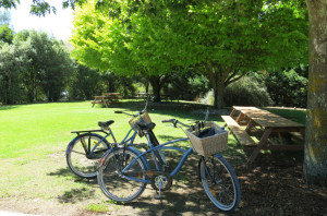 Idyllic picnic spots outside Te Kairanga. Bikes started looking pretty good to us after the sweat really started flowing on the walk.
