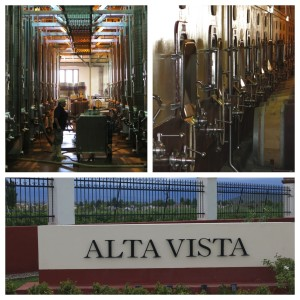 The well-oiled machine, Alta Vista, produces over 2 million bottles of wine per year.