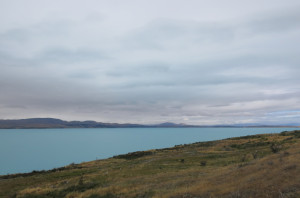 Glacial waters of Lake Pukaki on the road into the park.