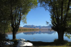 Views across a serene Lake  Alexandrina near the campsite.